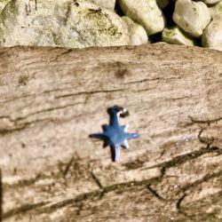 """Le pendentif """"étoile 8..."""