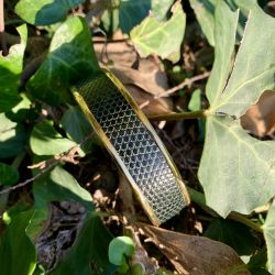 Le bracelet cuir vert sapin